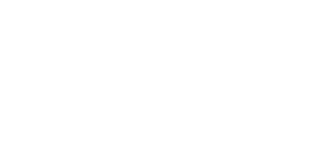 bloesser optik